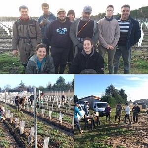 Journée d'entraide Jeunes Coopérateurs Vignerons