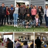 illustration : FORMATION JEUNES COOPERATEURS 31/03/2017