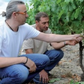 img Technicien viticole - Vigneron